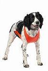 Mendota Pet - Skid Plate - Narrow Chest - Orange - Xlarge