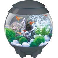 Oase Living Water - Biorb Halo 15 Mcr Aquarium - Gray- 4 Gallon/15 Liter