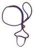 Mendota Pet -  Dog Walker - Purple - 3/8 Inch x 6 Feet