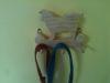 Fine Crafts - Wooden Husky Leash Holder