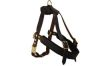 Angel Pet Supplies - Aspen Leather Harness - Brown - Small