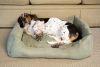 Iconic Pet - Luxury Swaddlez Bolster Pet Bed - Moss - Small