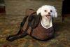 Iconic Pet - Luxury Totez Pet Carry Bag - Cocoa - Medium