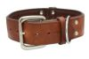 Angel Pet Supplies - Dallas Elite Collar - Brown - 26 X 2 Inch