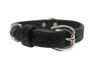 Angel Pet Supplies - Santa Fe Elite Collar - Black - 18 X 3/4 Inch