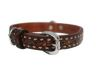 Angel Pet Supplies - Tucson Elite Collar - 2-Tone Brown - 18 X 3/4 Inch