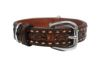 Angel Pet Supplies - Tucson Elite Collar - 2-Tone Brown - 20 X 1 Inch
