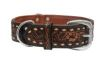 Angel Pet Supplies - Tucson Elite Collar - 2-Tone Brown - 24 X 1.5 Inch