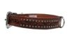 Angel Pet Supplies - Mesa Elite Collar - Brown - 20 X 1 Inch