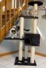Iconic Pet - High quality Mid Condo Cat Tree/Furniture - Dark Grey