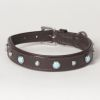 "Hound?s Best - Small Genuine Leather Dog Collar ""Arizona"""