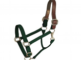 Horse And Livestock Prime - Halter Leather Crown Econ - Green - Cob