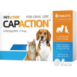 Petiq - Petaction Capaction For Dogs And Cats 6-Tablets - 2 - 25 Lbs
