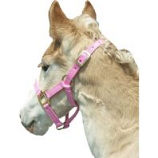 Horse And Livestock Prime -Premium Halter Chin With Snap - Pink - Weanling
