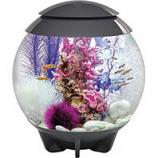 Oase - Aquatics - Biorb Halo 30 Mcr Aquarium - Gray - 8 Gal / 30 Liter