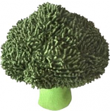 Petlou - Broccoli - 7 Inch