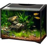 Aqueon Products - Glass - Ascent Led Aquarium Kit - Black - 20 Gallon