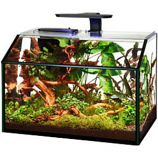 Aqueon Products - Glass - Shrimp Aquarium Kit Led - 9 Gallon