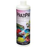 Hikari Sales Usa - Prazipro Safe & Fast Fluke Treatment - Medium - 4 Ounce