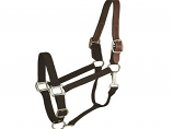 Horse And Livestock Prime - Halter Leather Crown Econ - Black - Horse