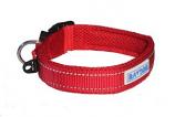 BayDog - Tampa Collar- Red - Large