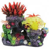 Poppy Pet - Coral Reef Formation - Multi - 8 X 6 X 8