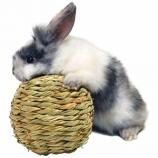 Marshall Pet - Peters Grass Ball - Small
