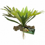 Zoo Med - Naturalistic Flora Staghorn Fern - Green
