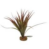 Blue Ribbon Pet Products -Color Burst Florals Mini Sword Plant - Plum - Mini
