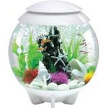 Oase - Aquatics - Biorb Halo 30 Mcr Aquarium - White - 8 Gal / 30 Liter