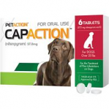 Petiq - Petaction Capaction For Dogs 6-Tablets - Over 25 Lb