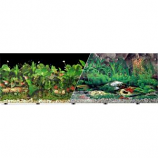Blue Ribbon Pet Products - Background Double - Sided Tropical Freshwater - 24In X 50Ft