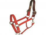 Horse And Livestock Prime - Halter Leather Crown Econ - Red - Large