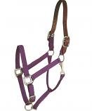Horse And Livestock Prime - Halter Leather Crown Econ - Purple - Cob