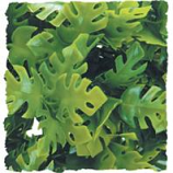Zoo Med - Amazon Phyllo Plant -  GREEN MEDIUM/18 INCH