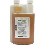 Chemtech - Evergreen Pro 60 - 6 Quart