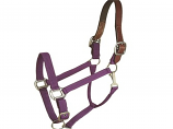 Horse And Livestock Prime - Halter Leather Crown Econ - Purple - Horse
