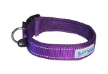 BayDog - Tampa Collar- Purple - Small