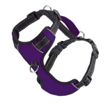 BayDog - Chesapeake Harness- Purple - Medium