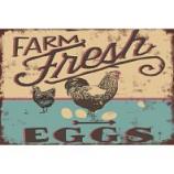 My Favorite Chicken - Farm Fresh Eggs Metal Sign - 12X16