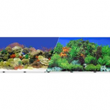 Blue Ribbon Pet Products - Background Double - Sided Coral Reef/Freshwater - 12In X 50Ft