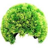 Poppy Pet - Moss Cave Hideout - Green - 8 Inch