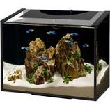 Aqueon Products - Glass - Ascent Led Aquarium Kit - Black - 6 Gallon