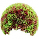 Poppy Pet - Moss Cave Hideout - Red / Green - 8 Inch